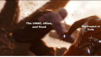 The Prophet, Truth, and Prophet: The UNSC, elites,  and flood  The Prophet of  Truth