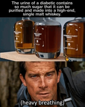 Family, Sugar, and Single: The urine of a diabetic contains  so much sugar that it can be  purified and made into a high-end  single malt whiskey.  FAMILY  R FAMIL  ERSKY  EIELD FAMILY  (heavy breathing) What proof would it be?