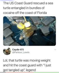 "Lol, Memes, and Cocaine: The US Coast Guard rescued a sea  turtle entangled in bundles of  cocaine off the coast of Florida  Cayde-6'5  @Parkour Lewis  Lol, that turtle was moving weight  and hit the coast guard with ""Ijust  got tangled up, legend <p>Wonder where he got it via /r/memes <a href=""https://ift.tt/2MiHtwg"">https://ift.tt/2MiHtwg</a></p>"
