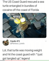 "Funny, Lol, and Cocaine: The US Coast Guard rescued a sea  turtle entangled in bundles of  cocaine off the coast of Florida  DAN  Cayde-6'5  @Parkour_Lewis  Lol, that turtle was moving weight  and hit the coast guard with ""I just  got tangled up"", legend ""Rescued"" a sea turtle he should be locked up for drug trafficking! 😂😂"