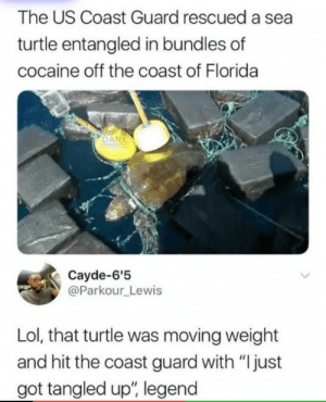 "Lol, Cocaine, and Florida: The US Coast Guard rescued a sea  turtle entangled in bundles of  cocaine off the coast of Florida  Cayde-6'5  @Parkour Lewis  Lol, that turtle was moving weight  and hit the coast guard with ""Ijust  got tangled up, legend"