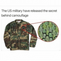 Cookies, Food, and Goals: The US military have released the secret  behind camouflage ~Adam same cancer goals food cake snow netflix relatable bleach kys kms suicide youtube 2017 😂 winter March cookies hashtag valentines valentinesday verifykawii f4f follow dab thicc