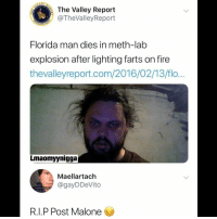Fire, Florida Man, and Memes: The Valley Report  @TheValleyReport  Florida man dies in meth-lab  explosion after lighting farts on fire  thevalleyreport.com/2016/02/13/flo...  Lmaomyynigga  Maellartach  @gayDDeVito  R.I.P Post Malone 😂