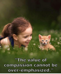 Memes, Compassion, and 🤖: The value of  Compassion cannot be  over-emphasized.
