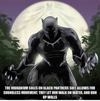 Black panther has the dead silence perk on.: THE VIBRANIUM SOLES ON BLACK PANTHERS SUITALLOWS FOFR  SOUNDLESS MOVEMENT, THEY LET HIM WALK ON WATER, AND RUN  UP WALLS Black panther has the dead silence perk on.