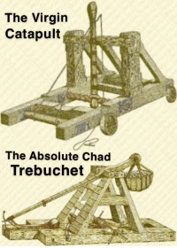 trebuchet: The Virgin  Catapult  The Absolute Chad  Trebuchet