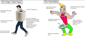 The Virgin Toilet Paper vs The Chad Bidet: The Virgin Toilet Paper vs The Chad Bidet
