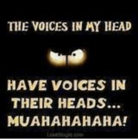 voices in my head: THE VOICES IN MY HEAD  HAVE VOICES IN  THEIR HEADS..  MUA HAHAHAHA!