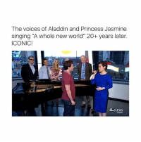 """Aladdin, Memes, and Princess Jasmine: The voices of Aladdin and Princess Jasmine  singing """"A whole new world"""" 20+ years later.  ICONIC!  65 NEWS Join Mamoothu for more <3"""