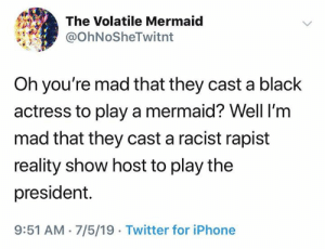 (S): The Volatile Mermaid  @OhNoSheTwitnt  Oh you're mad that they cast a black  actress to play a mermaid? Well I'm  mad that they cast a racist rapist  reality show host to play the  president.  9:51 AM 7/5/19 Twitter for iPhone (S)