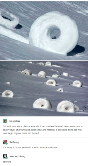 Donuts, Live, and Snow: the-vortexx  Snow donuts are a phenomena which occur when the wind blows snow over a  snowy layer of ground and other snow and material is collected along the way  until large rings or rolls' are formed  chelly-egg  It's lovely to know we live in a world with snow donuts  rasec-wizzlbang  snonuts So this is a thing that exists