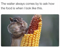 Food, Never, and How: The waiter always comes by to ask how  the food is when I look like this Never fails...😂💯 https://t.co/7nXpKbPHOv