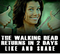 SMASH that like button if you can't wait for the premiere. (Y) JOIN US: http://bit.ly/1TGOfeX ~Martin: THE WALKING DEAD  RETURNS IN 2 DAYS  LIKE AND SHARE SMASH that like button if you can't wait for the premiere. (Y) JOIN US: http://bit.ly/1TGOfeX ~Martin
