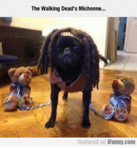 The Walking Dead's Michonne...  featured on  iFunny.com Michonne is looking good