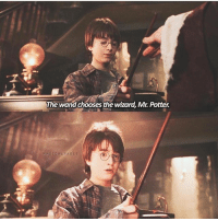 Head, Memes, and Control: The wand chooses the wizard, Mr. Potter.  MAGICAL PAGE As you all know, the wand chooses the wizard... Head on over to the link in the BIO, & let the wild world of wizardry take control! See which wand is calling to you! potterhead - Check out the Hogwarts Express Emporium, the finest magical products in the Wizarding world. - Free Owl Postal Service - View Now, Link in Bio - WWW.GEEKOUTTRENDS.COM