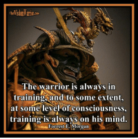 Amazon, Books, and Driving: The warrior is always in  training and to some extent,  at some level of consciousness,  training is always on his mind.  Forrest E. Morgan The warrior is always in training, and to some extent, at some level of consciousness, training is always on his mind. Forrest E. Morgan       At first glance this statement seems ridiculous. How could anyone always be in training? But when given closer thought, this makes perfect sense, knowing the character of the warrior. He may not be always training physically, but at some level of consciousness he is training.        If he is driving down the road, he may be visualizing self-defense techniques in his mind or visualizing a dangerous encounter and how he would handle the situation. This is a form of training. Mental training is as important as physical training for the warrior.       There are many examples of warrior training that do not involve actual physical training. While in the movie theater, the warrior may be practicing awareness of his surroundings, while at the same time he is critiquing what the hero could have done differently in order to have ended the conflict better, again a form of mental training.       When you look at training in this light, the admonition by Musashi in, The Book of Five Rings, to train more than you sleep becomes a possibility even in today's world. To the warrior, the training possibilities are endless, no matter what he is actually doing.        Next time you are doing something other than working on your skills, think about how you could be integrating training into what you are doing. When you look at training in this light, always training at some level becomes a very real possibility, even in today's world. Bohdi Sanders ~ excerpt from the NEW BOOK, The Warrior Ethos  The Warrior Ethos is NOW AVAILABLE on Amazon at: http://tinyurl.com/TheWarriorEthos or on my website at: http://thewisdomwarrior.com/ Get Your Copy TODAY!!