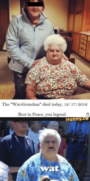 """egaylitarian:  klubbhead:   hale-hortler:   litaisfearless: THE WAT GRANNY DIED TODAY. I am actually really sad. I hope she passed peacefully. True legend of memes. RIP WAT GRANDMA A legend falls   Ah man :'(   2016's officially gone too far : The """"Wat-Grandma"""" died today, 12/17/2016  Rest in Peace, you legend.  ifynny.co  1   wat egaylitarian:  klubbhead:   hale-hortler:   litaisfearless: THE WAT GRANNY DIED TODAY. I am actually really sad. I hope she passed peacefully. True legend of memes. RIP WAT GRANDMA A legend falls   Ah man :'(   2016's officially gone too far"""