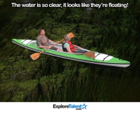 Wow, this is stunning:: The water is so clear, it looks like they're floating!  Talent  Explore Wow, this is stunning: