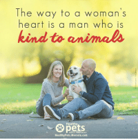 Is your partner an animal lover?: The way to a woman's  heart is a man who is  kind to animals.  Healthy  with Dr Karen Becker  Healthy Pets. Mercola.com Is your partner an animal lover?