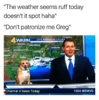 """Who did this 😂🐶 https://t.co/xAYiVPCehi: """"The weather seems ruff today  doesn't it spot haha""""  """"Don't patronize me Greg""""  LIVE RADAR NETWORK  Nashville  markuo Oklahoma City  bbock  1004 WSMVD  Channel 4 News Today Who did this 😂🐶 https://t.co/xAYiVPCehi"""