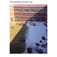Memes, The Weather, and Weather: The weather where I live So true today it was 65F and yesterday was 20F 😅 double tap if you relate