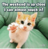 The weekend is so close  can almost touch it!  Madly Odd The Weekend Is So Close I Can Almost Touch It