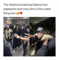 Goals af omg follow @hotpeoplefeed (me) for more posts like this!!: The Weeknd protecting Selena from  paparazzis and crazy fans is the cutest  thing ever Goals af omg follow @hotpeoplefeed (me) for more posts like this!!