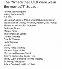 "Charlie, Dumbledore, and Elf: The ""Where the FUCK were we in  the movies?!"" Squad:  Peeves the Poltergeist  Winky the House Elf  Lee Jordan as more than a Quidditch commentator  Explanation of Moony, Wormtail, Padfoot, and Prongs  Firenze as a Divination Professor  Professor Binns  Madam Pince  The concept of Squibs  Garden Gnomes  Charlie Weasley  Ludo Bagman  Veelas  Bitchy Percy Weasley  Marietta Edgecombe  Merope and Marvolo Gaunt  Ginny's bad ass Bat Bogey Hex  Teddy Lupin snogging Victoire Weasley  St. Mungo's Hospital  Ariana Dumbledore/Albus' Past Anyone know what to do in Melbourne because neither and my friend wants to do tourist things"