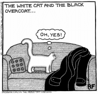 Memes, Cartoon, and Cartoons: THE WHITE CAT AND THE BLACK  OVERCOAT...  OH, YES!  FACEBOO  THE PROWL CAT CARTOONS Oh, no!