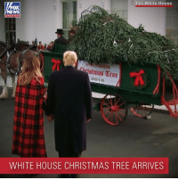 Christmas, Memes, and White House: The White House  OX  channel  stmas Tre  WHITE HOUSE CHRISTMAS TREE ARRIVES O CHRISTMAS TREE: President @realdonaldtrump and @flotus greeted a group of people outside the North Portico as The White House's official Christmas tree arrived on Monday.