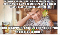 Collard Greens, Food, and Monster: THE WILD CABBAGE GAVE US: CABBAGE, BROCCOLI,  CAULIFLOWER, KALE, BRUSSELS SPROUTS, COLLARD  GREENS, SAVOY, KOHLRABI, AND GAI LAN  ONE CRAPPY PLANT IS EVERY FOOD YOU  HATED AS A CHILD  made on  Eur It is the monster with 12 heads