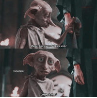 Memes, Free, and Wizards: THE WIZARDS  Master has given Dobby a sock!  Dobby is free! Dobby or Picket (from FBAWTFT)? harrypotter hp hogwarts jkrowling