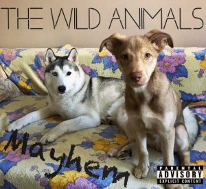 Content, Mayhem, and Album: THE WLD ANMALS  Mayhem  P ARE NTAL  ADVISORY  EXPLICIT CONTENT These guys recorded the album of the year.
