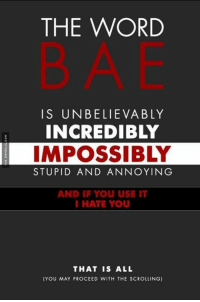 Such An Ugly Word: THE WORD  BAE  IS UNBELIEVABLY  INCREDIBLY  IMPOSSIBLY  STUPID AND ANNOYING  AND IF YOU USE IT  HATE YOU  THAT IS ALL  (YOU MAY PROCEED WITH THE SCROLLING) Such An Ugly Word