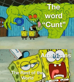"""Snowflakes. by Switz_R MORE MEMES: The  word  Cunt""""  Americans  The Rest of the  World Snowflakes. by Switz_R MORE MEMES"""