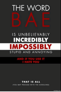 Bae: THE WORD  IS UNBELIEVABLY  INCREDIBLY  IMPOSSIBLY  STUPID AND ANNOYING  AND IF YOU USE IT  I HATE YOU  THAT IS ALL  (YOU MAY PROCEED WITH THE SCROLLING) Bae