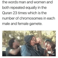 Memes, True, and Quran: the words man and women and  both repeated equally in the  Quran 23 times which is the  number of chromosomes in each  male and female gamete. Is this true before @kvrdishh's memes make me have to indulge in some qurainic verses with a brand new frame of mind on a whole 'nother level? 👀🤔🤷‍♂️ (Shout out everyone who can see through the bullshit arguments to learn new things 😂💯 we up!)
