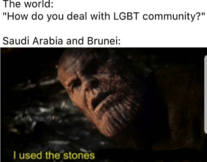 """Community, Lgbt, and Saudi Arabia: The world:  """"How do you deal with LGBT community?""""  Saudi Arabia and Brunei:  ko A  T used the stones Can Egyptians give the n word pass? Discuss."""