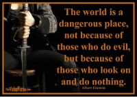 The world is a dangerous place, not because of those who do evil, but because of those who look on and do nothing. Albert Einstein       I think that this statement by Albert Einstein would be more accurate if he had stated that the world is a dangerous place not only because of those who do evil, but also because of those who look on and do nothing. There are some very dangerous, evil people in this world. That is just the way it is, and if anyone disputes that, they are living in a fantasy world. Some people are just plain bad and will kill you at the drop of a hat, and then order a Big Mac and smile.       As bad as that sounds, and it is pretty bad, Einstein considered those people less of a problem than the people who look on and do nothing. Can you see his point? If everyone took an active role in bringing the evil people to justice, swift and sure justice, the evil doers would become less and less prevalent. Even though there are a lot of evil men in this world, there are many more people who allow them to exist because of their apathy or fear. Those who allow evil, condone evil.       This world is a dangerous place both because of evil men and because of the apathy of others. This is why it is so important that the warrior be prepared to recognize and confront evil. If the warrior is not willing to stand up and do something about the evil in this world, who will? Can you rid this world of evil by protecting those around you? No. Can you make those around you safer, simply because you are there with them? Absolutely!  Bohdi Sanders ~ excerpt from the NEW BOOK, The Warrior Ethos  The Warrior Ethos is NOW AVAILABLE on Amazon at: http://tinyurl.com/TheWarriorEthos or on my website at: http://thewisdomwarrior.com/ Get Your Copy TODAY!!: The world is a  dangerous place,  not because of  those who do evil,  t because of  those who look on  and do nothing.  Albert Einstein The world is a dangerous place, not because of those who do evil, but because of those who lo
