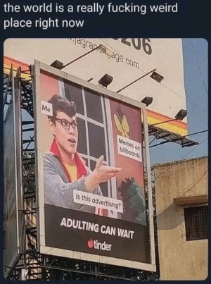 tindershwinder:  I'm sold: the world is a really fucking weird  place right now  Jagrapegage.com  Me  Memes on  billboards  Is this advertising?  ADULTING CAN WAIT  tinder tindershwinder:  I'm sold