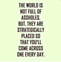 strategize: THE WORLD IS  NOT FULL OF  ASSHOLES  BUT, THEY ARE  STRATEGICALLY  PLACED SO  THAT YOU'LL  COME ACROSS  ONE EVERY DAY