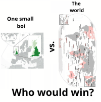 Boi Who Would Win