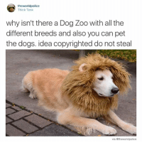 Dank, 🤖, and Idea: the world police  Think Tank  why isn't there a Dog Zoo with all the  different breeds and also you can pet  the dogs. idea copyrighted do not steal  via @theworldpolice