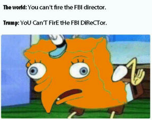 Directorate: The world: You can't fire the FBI director  Trump: YoU Can'T FirE tHe FBl DiReCTor.