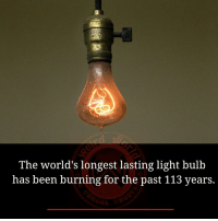 Memes, Been, and 🤖: The world's longest lasting light bulb  has been burning for the past 113 years.