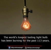 Memes, Been, and 🤖: The world's longest lasting light bulb  has been burning for the past 113 years.  団/d.dyouknowpagel。@didyouknowpage