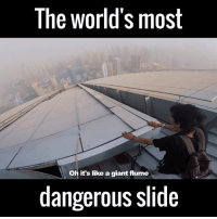 Dank, 🤖, and Flume: The World's most  Oh it's like a giant flume  dangerous slide What the f*ck 😐😐😐😐  by James Kingston