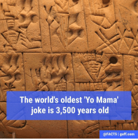 "Memes, Tablet, and Tablets: The world's oldest 'Yo Mama  joke is 3,500 years old  @FACTS I guff.com In 1976, an archaeologist named J.J. van Dijk found an ancient Babylonian tablet dating to around 1,500 BCE that was inscribed with several riddles. Unfortunately, the first half of of the ""yo mama"" joke was not included on the tablet, but the punchline was! It reads, ""...of your mother is by the one who has intercourse with her. What-who is it?"" Quite the zinger, huh? PS - The yo mama joke isn't pictured (not that you could read it anyway)."