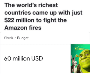 I am the Lorax I speak for the trees please do something they help me breath: The world's richest  countries came up with just  $22 million to fight the  Amazon fires  Shrek / Budget  SHREK  60 million USD I am the Lorax I speak for the trees please do something they help me breath
