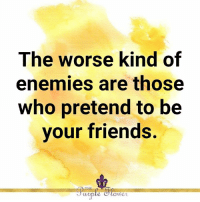 Friends, Memes, and Enemies: The worse kind of  enemies are those  Who pretend to be  vour friends